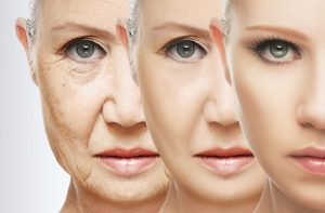anti aging benefits of pueraria