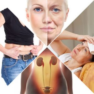 pueraria for menopause symptoms